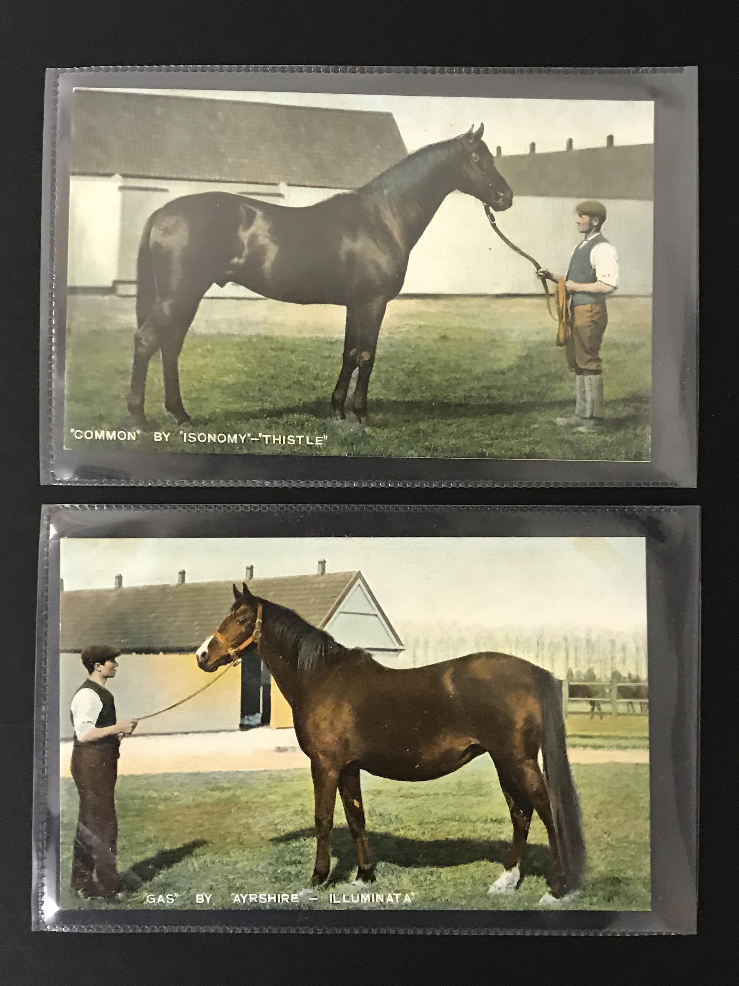 SIX UNUSED POSTCARDS BY B & D LONDON - KROMO SERIES PRINTED IN SAXONY - HORSES - Image 3 of 5
