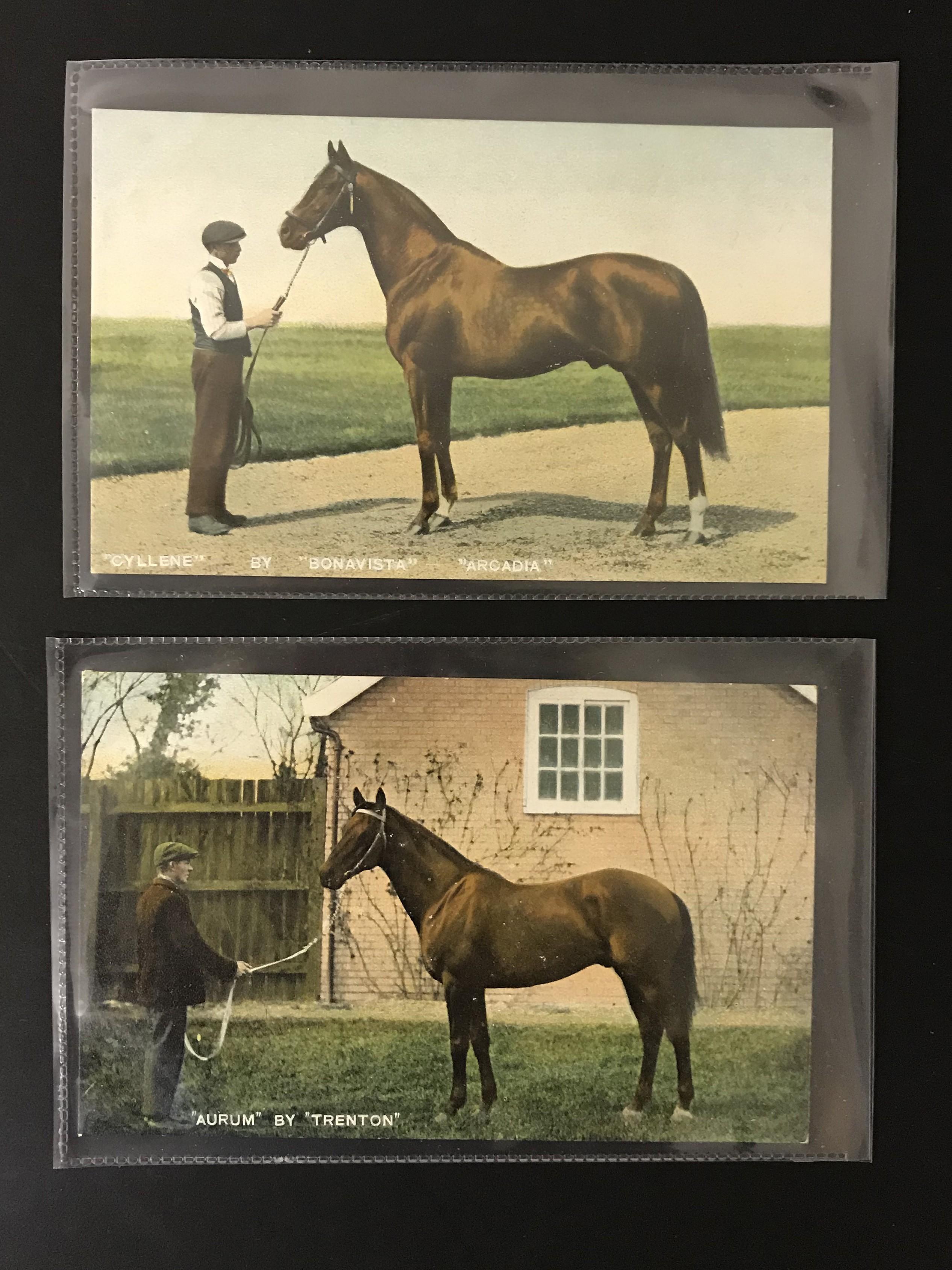 SIX UNUSED POSTCARDS BY B & D LONDON - KROMO SERIES PRINTED IN SAXONY - HORSES - Image 2 of 5