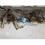 Lot 0048 Image