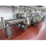 Kayat Engineering tray erector-packing line, including: Kayat Engineering tray packer, model TP-50A,