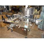 Marco Sistema 9501 Double Sided Conveyorized Labeler with (2) M200-15DX Label Tampers sn 208S4013