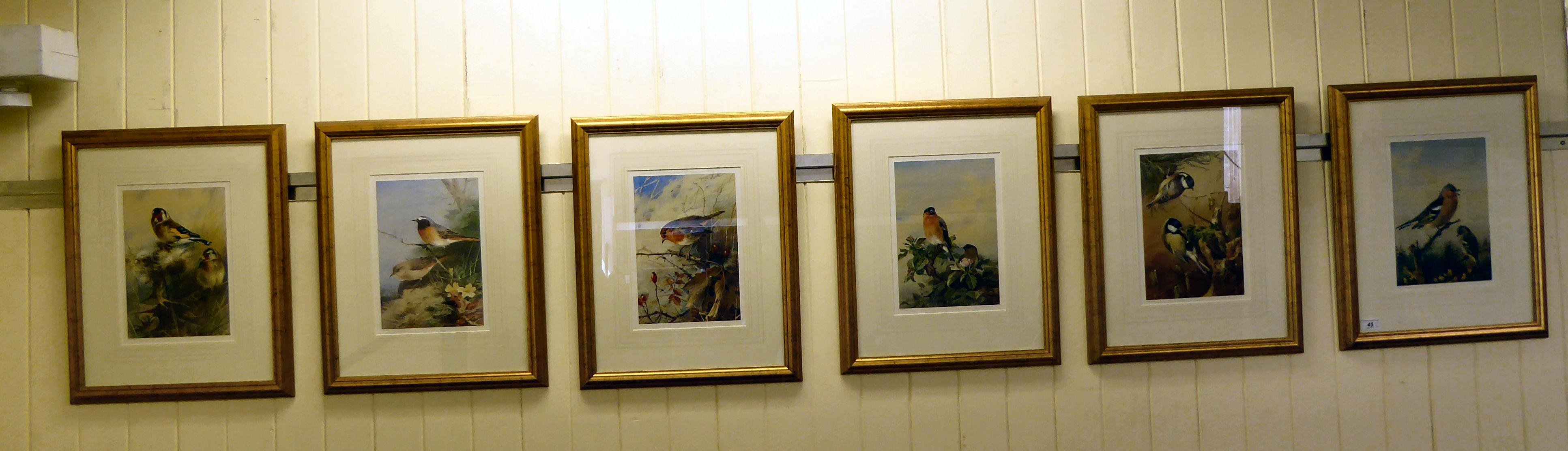 Lot 45 - A set of six ornithological studies,
