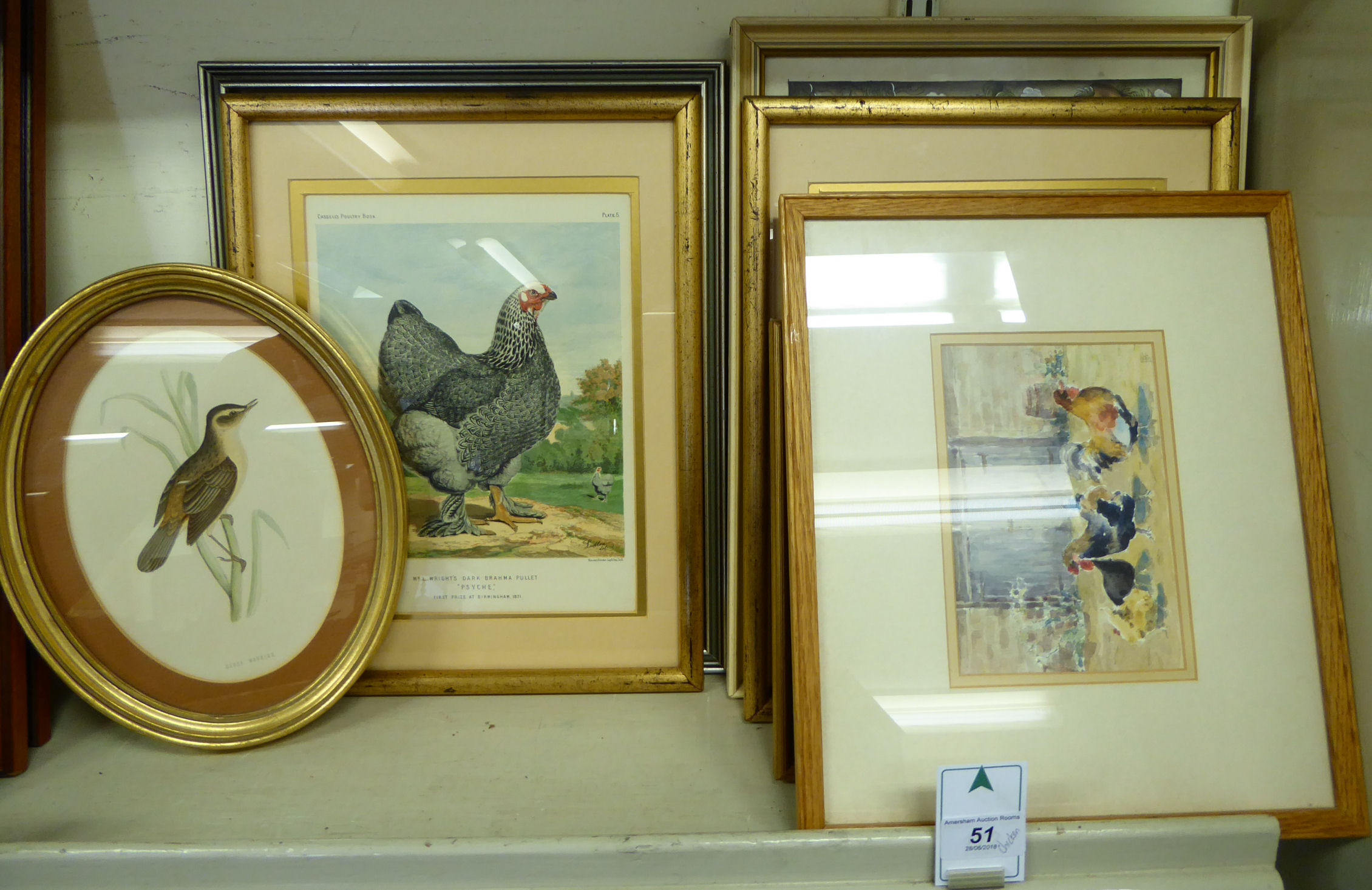 Lot 51 - Chicken related pictures: to include prints,