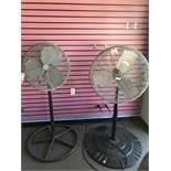 (2) Pedestal Fans