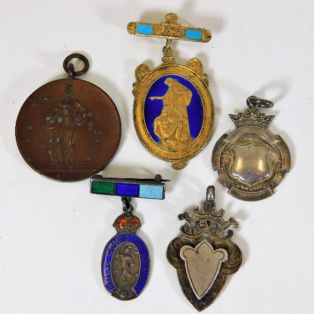 Lot 798 - A small selection of various badges