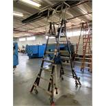 Little Giant Cage 18509 Ladder System, 5-9' Cage Height