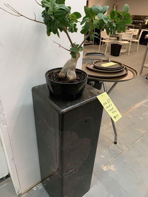 Présentoir et petit arbre Style Bonzai - Image 2 of 3