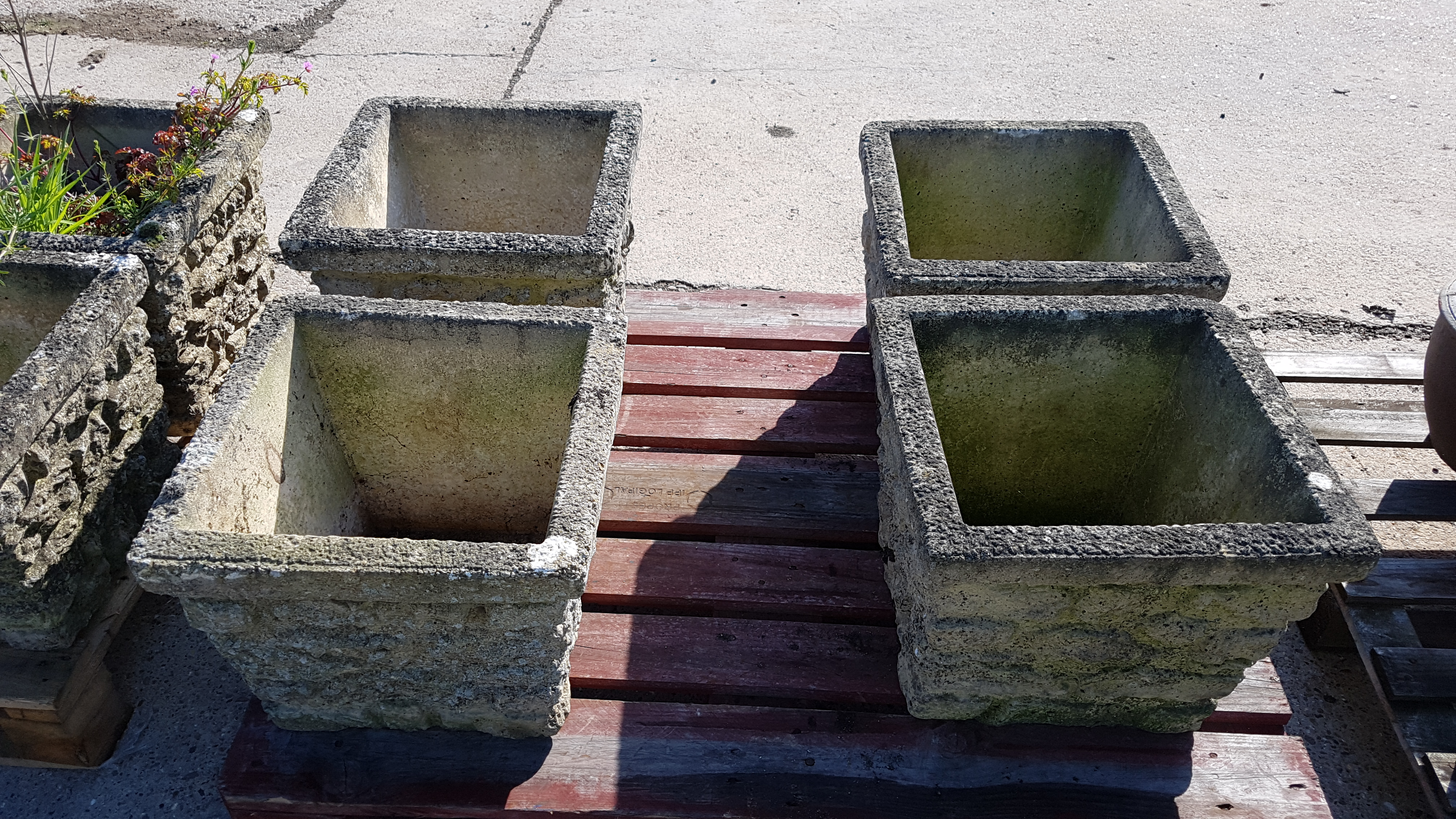 Lot 50 - 4 x Square Concrete Planters