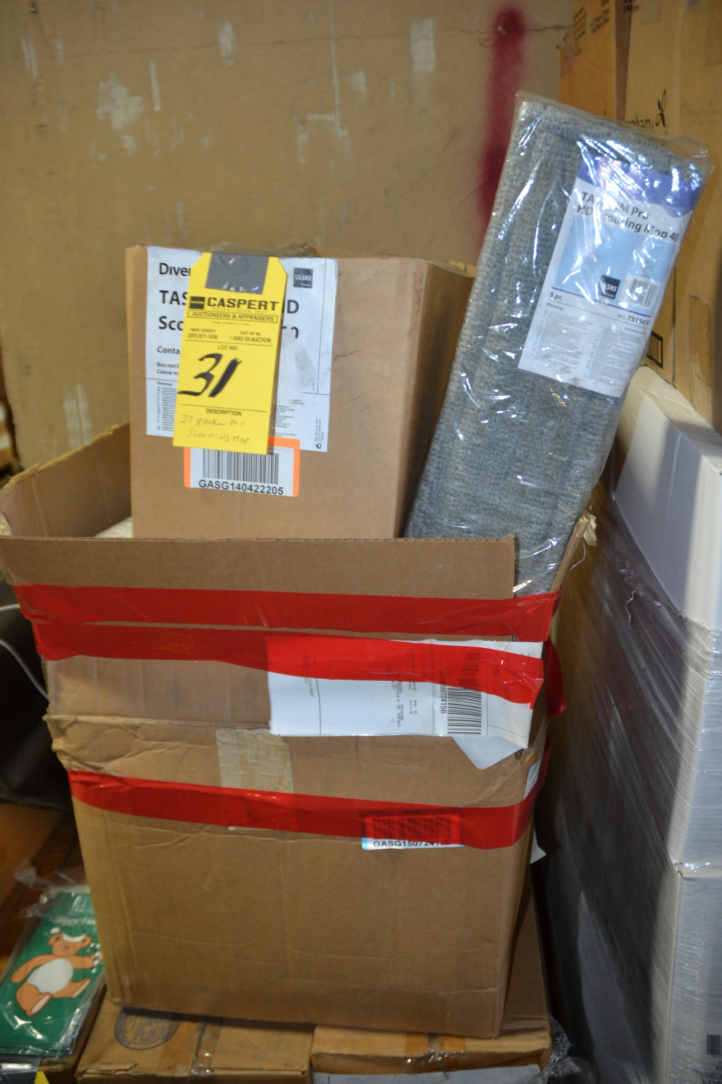 Lot 31 - PACKAGES OF SCOURING MOPS