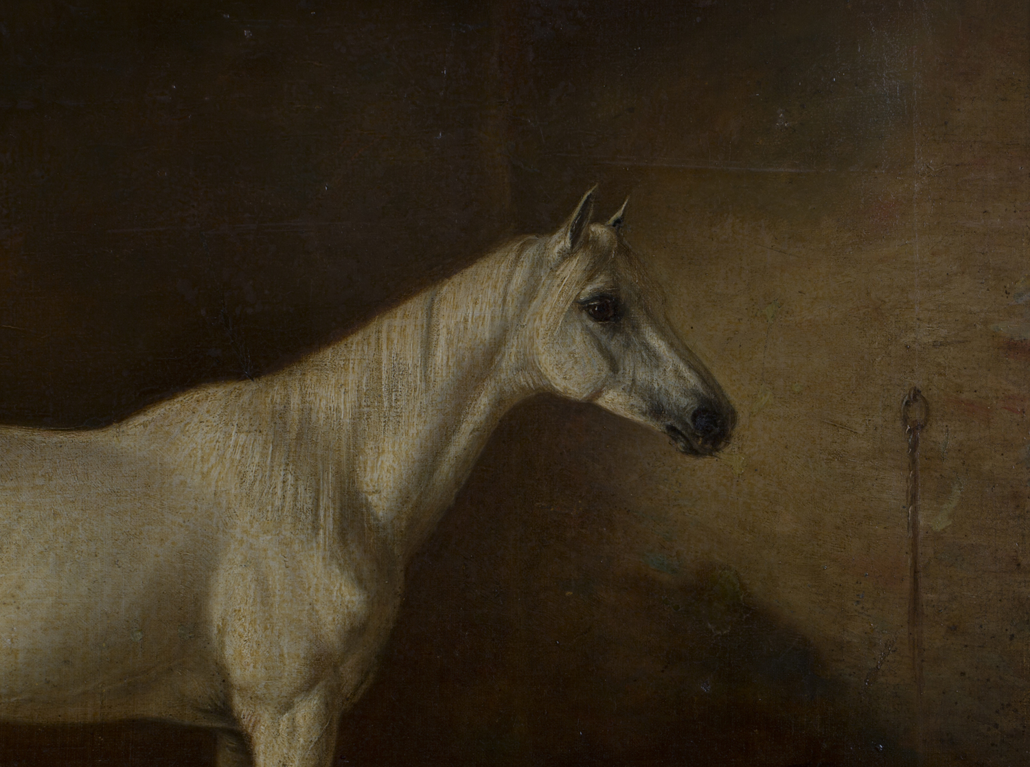 Lot 23 - Circle of John Frederick Herring - Portrait of a Grey Horse within a Stable, 19th century oil on