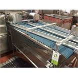 SS conveyor out of Mondini, 4 lane to 2 lane diverter, 35 in wide x 112 in long, blue plastic belt.