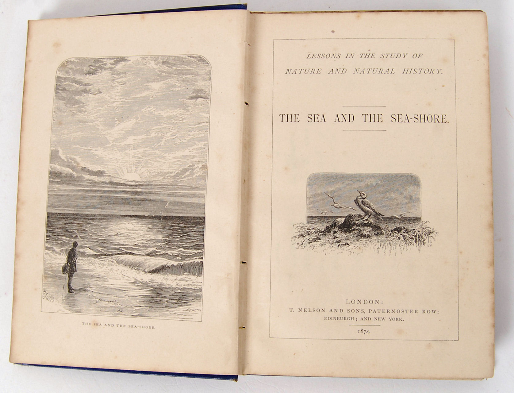 Lot 193 - THE SEA AND THE SEASHORE