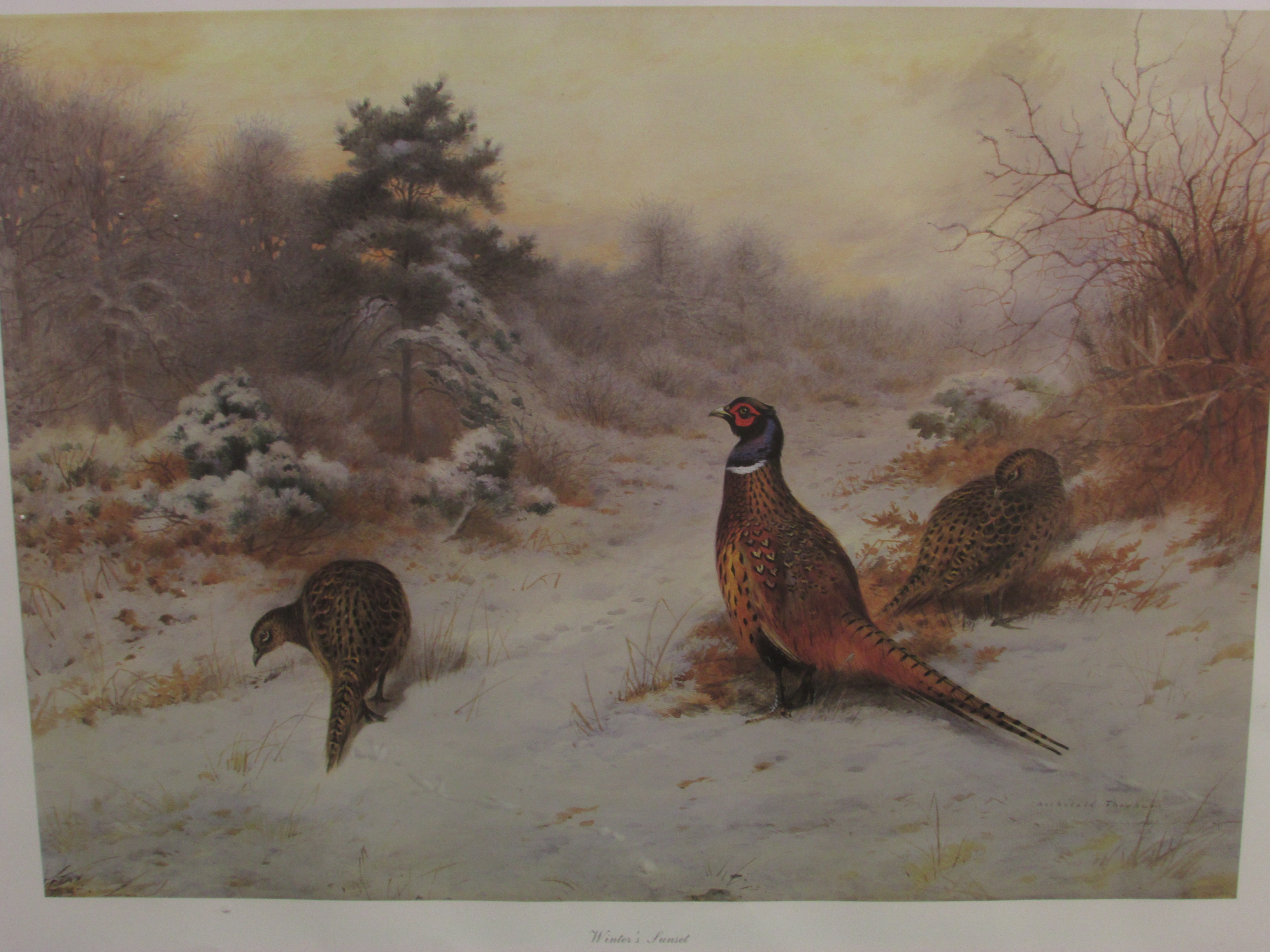 Lot 224 - After Archibald Thorburn (1860-1935) - 'Winter's Sunset', limited edition colour print 267 / 850,