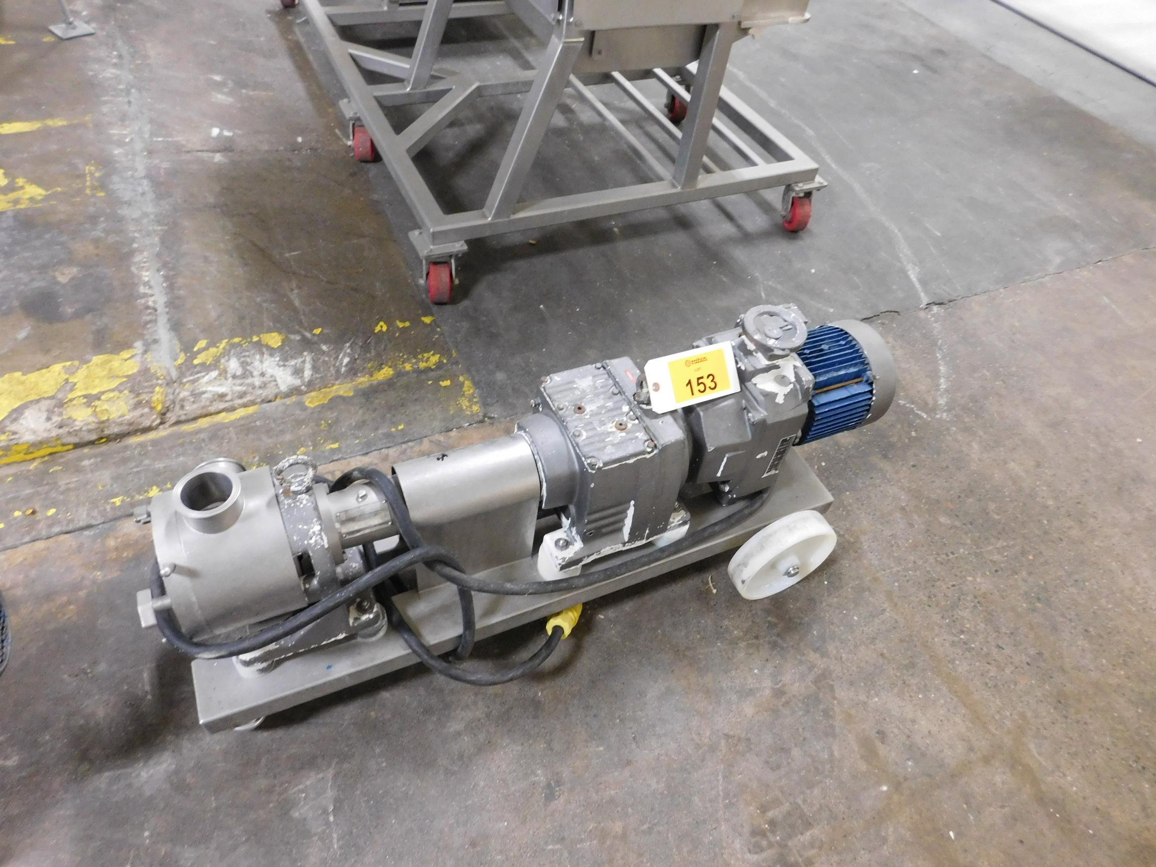 Lot 153 - Low Shear Pump