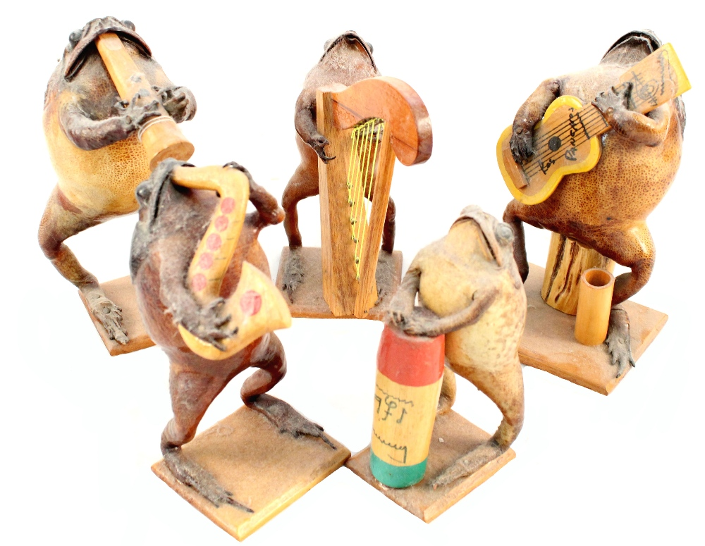 A taxidermy band of five toads playing various instruments