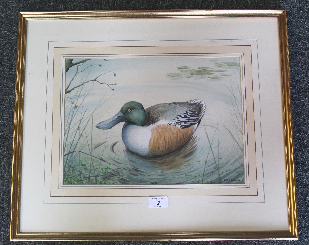 A Simon Trinder watercolour 'Shoveler', signed lower right, framed and glazed,