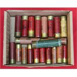 Various 8 and 10 bore cartridges with an empty 4 bore Eley Bro's case,