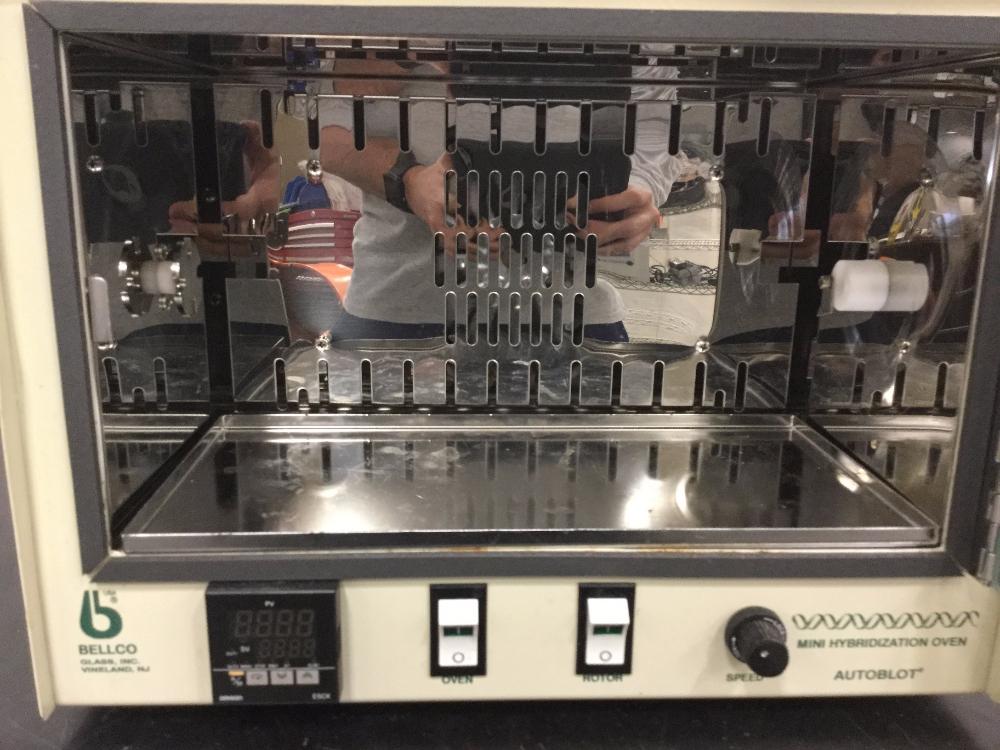 Lot 58 - Bellco Glass Autoblot Mini Hybridization Oven