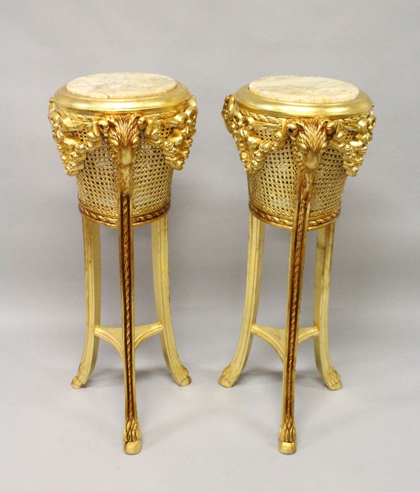 Lot 1015 - A PAIR OF DECORATIVE MARBLE TOP GILTWOOD STANDS, with carved rams mask decoration. 3ft 9ins high x