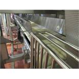 Shared flat belt conveyor approx 22 ft. L x 25 in. W with 10 in. h side splash guards, sanitary