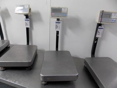 Lot 26 - 150 Lb Capacity Scale | Digital Platform Scale, 150lb. Cap Scale I.D. M602 | MODEL# FG-60KAL |