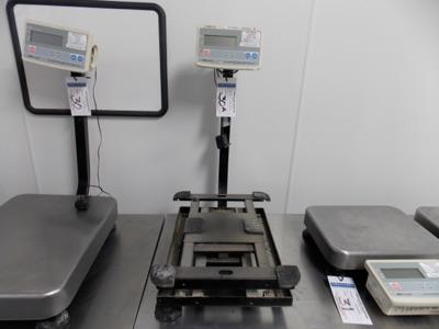 Lot 30A - AND | Digital Platform Scale, 150lb. Cap Scale I.D. M102 | MODEL# FG-60KAL | SERIAL# EQ1930552 | *
