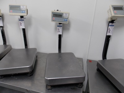 Lot 23 - 150 Lb Capacity Scale | Digital Platform Scale, 150lb. Cap Scale I.D. M301 | MODEL# FG-60KAL |