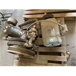 Compressor pump and motor
