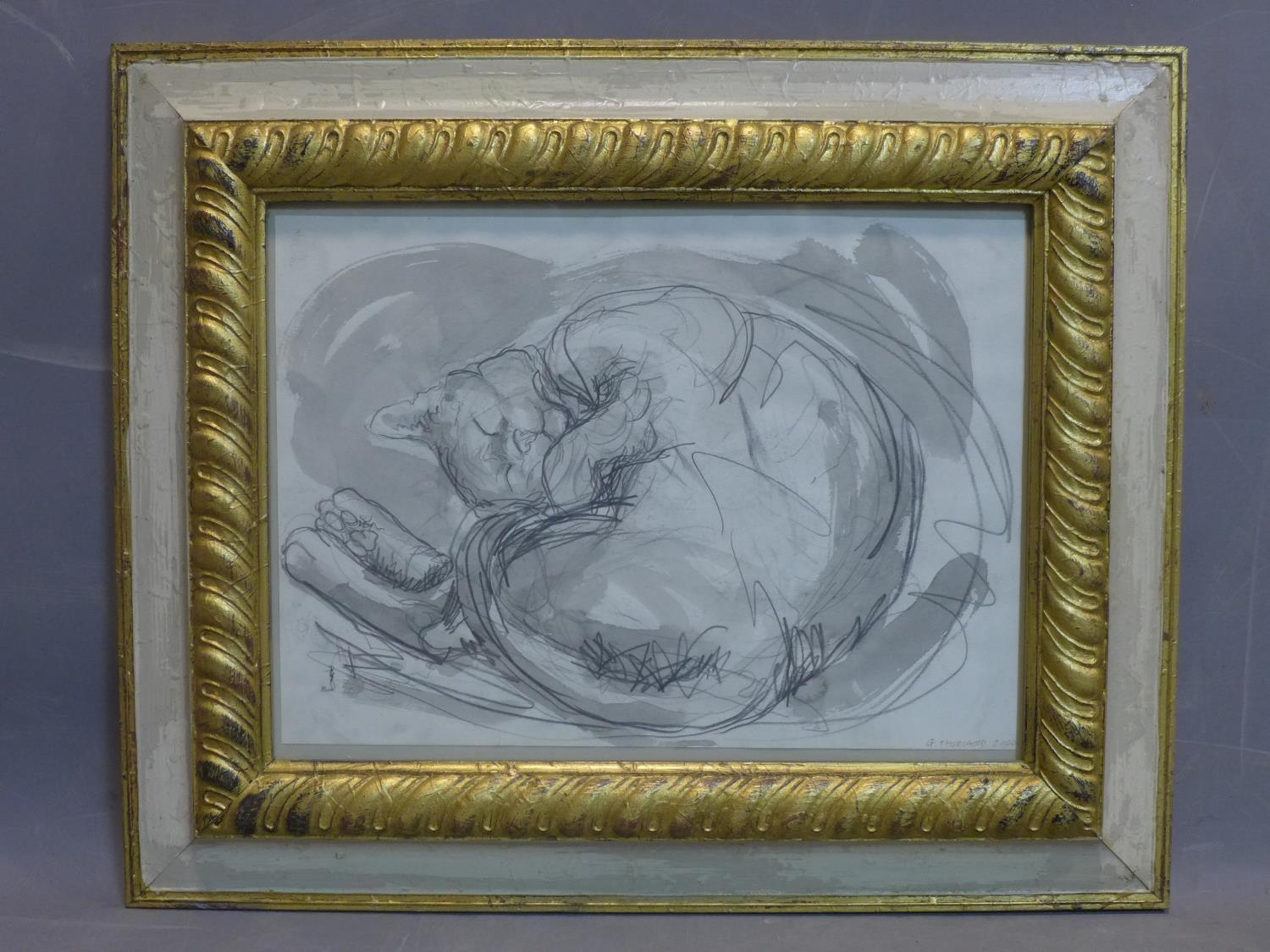 Lot 52 - Contemporary British draughtsman, sleeping cat, pencil and watercolour, signed and dated 'G.