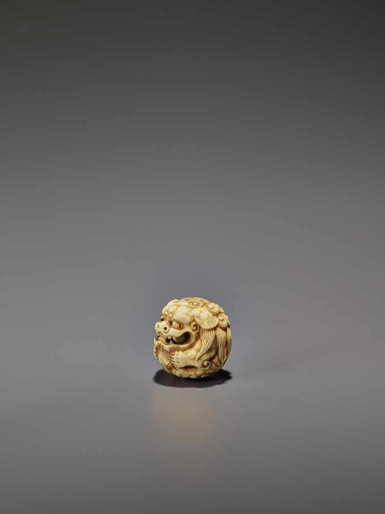 AN IVORY NETSUKE OF A SHISHI ROLLED INTO A BALL UnsignedJapan, 19th century, Edo period (1615-1868) - Image 5 of 9
