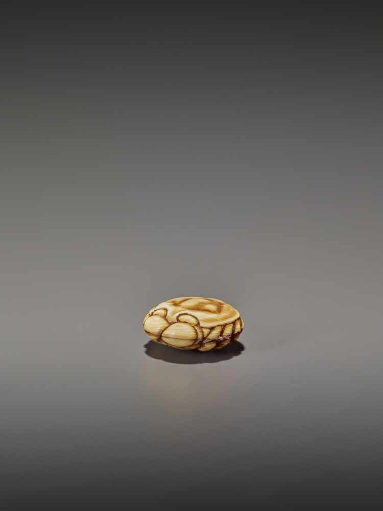 A FINELY STAINED WALRUS IVORY TWO-PART MANJU NETSUKE OF A CRAB UnsignedJapan, Osaka, early to mid- - Image 6 of 10