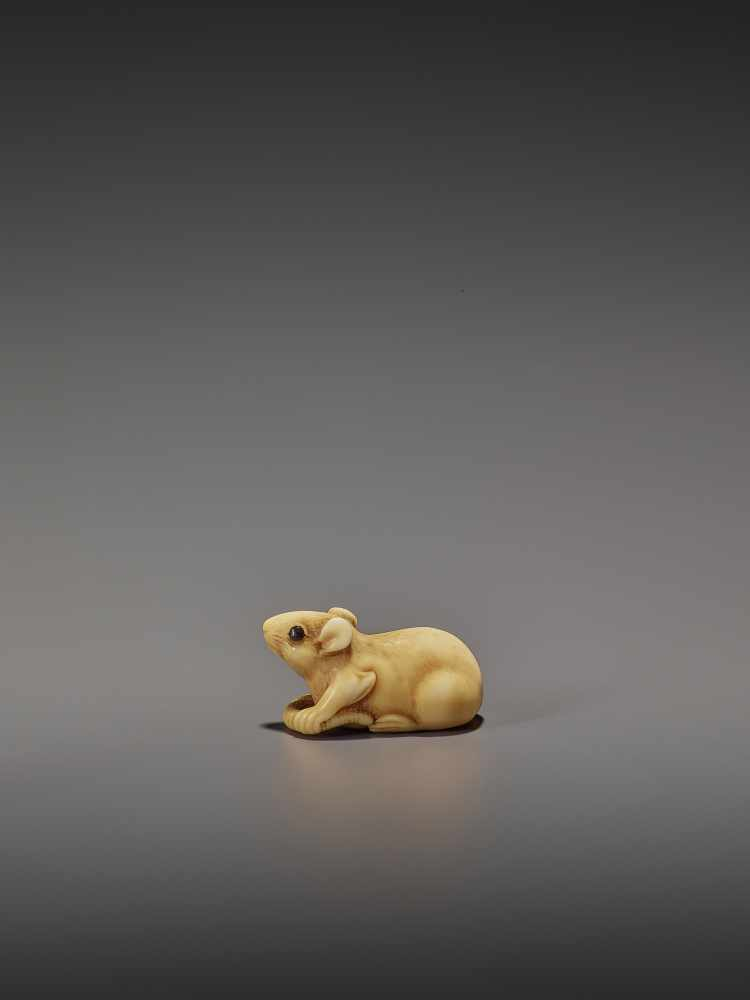 A CHARMING MARINE IVORY NETSUKE OF A RAT HOLDING ITS TAIL UnsignedJapan, 19th century, Edo period ( - Image 3 of 10