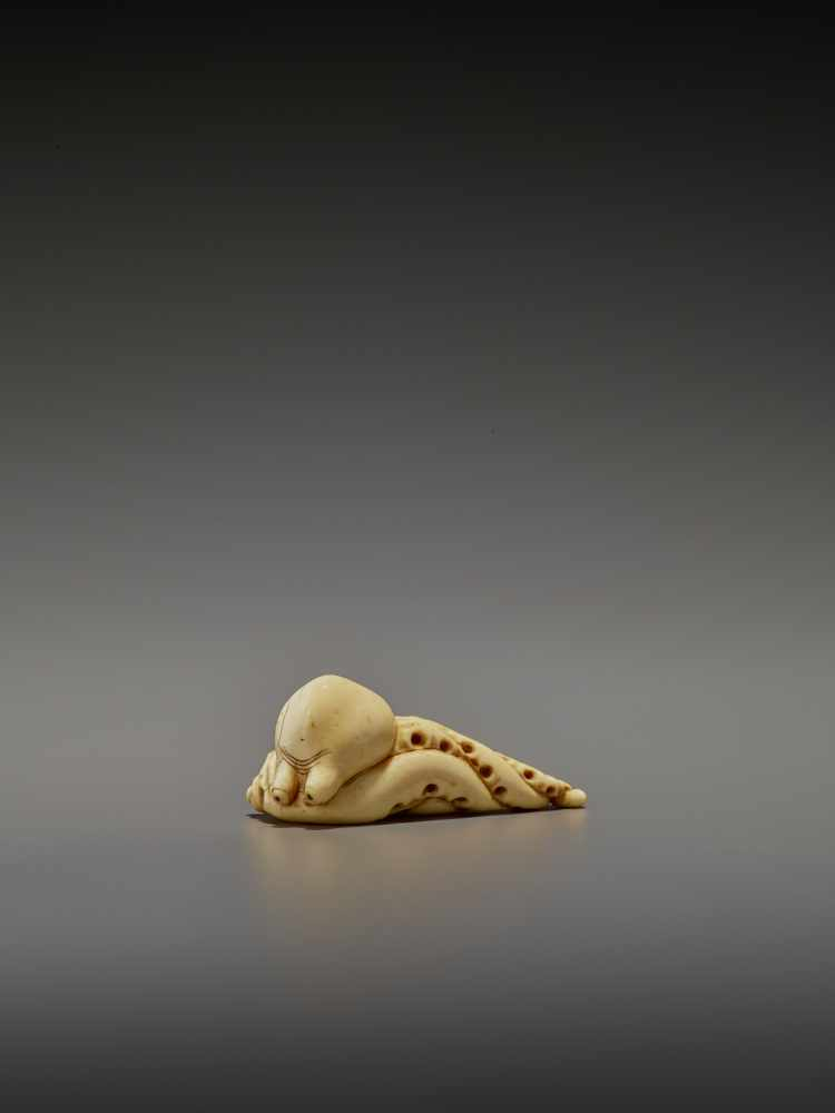 A RARE IVORY NETSUKE OF AN OCTOPUS UnsignedJapan, early 19th century, Edo period (1615-1868)The - Image 4 of 11