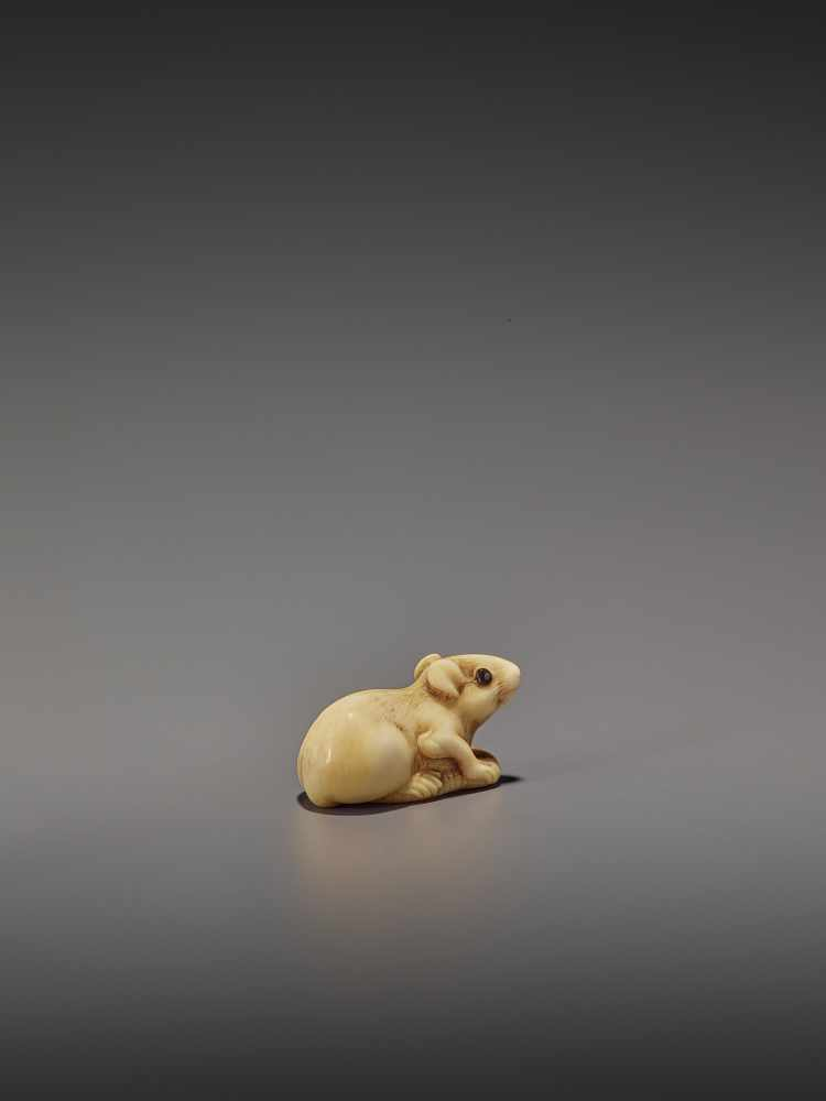 A CHARMING MARINE IVORY NETSUKE OF A RAT HOLDING ITS TAIL UnsignedJapan, 19th century, Edo period ( - Image 6 of 10