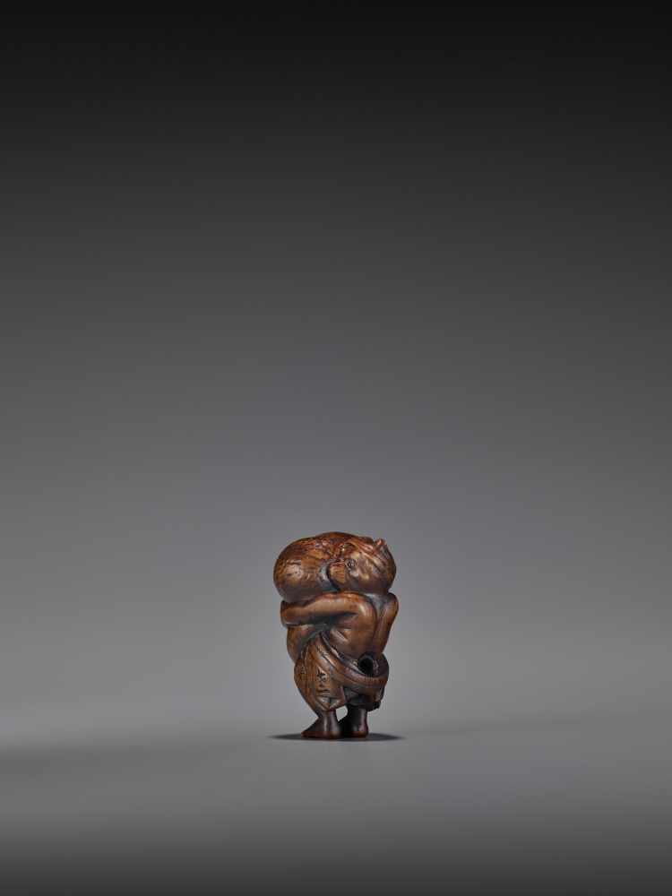 TOMOMASA: AN AMUSING WOOD NETSUKE OF A TANUKI WITH GIANT SCROTUM By Tomomasa, signed - Image 2 of 8
