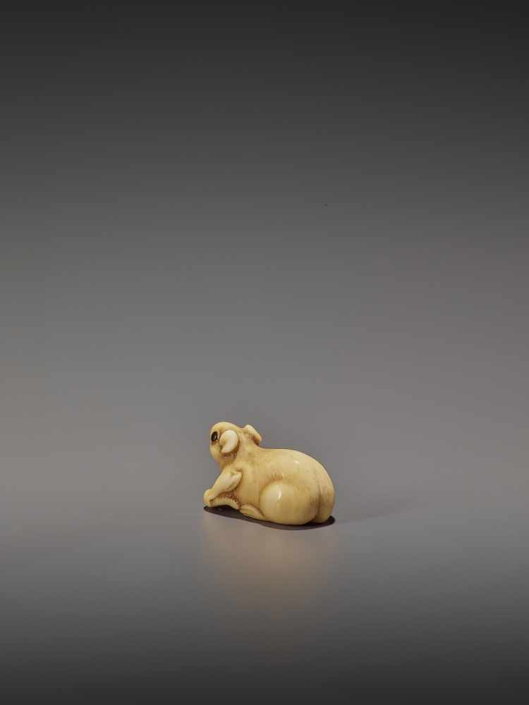 A CHARMING MARINE IVORY NETSUKE OF A RAT HOLDING ITS TAIL UnsignedJapan, 19th century, Edo period ( - Image 4 of 10