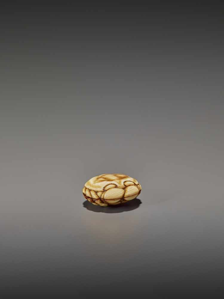 A FINELY STAINED WALRUS IVORY TWO-PART MANJU NETSUKE OF A CRAB UnsignedJapan, Osaka, early to mid-