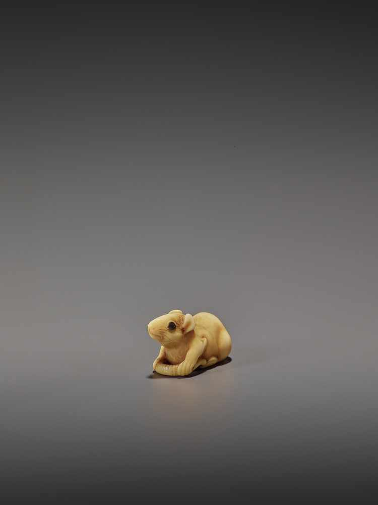 A CHARMING MARINE IVORY NETSUKE OF A RAT HOLDING ITS TAIL UnsignedJapan, 19th century, Edo period ( - Image 9 of 10
