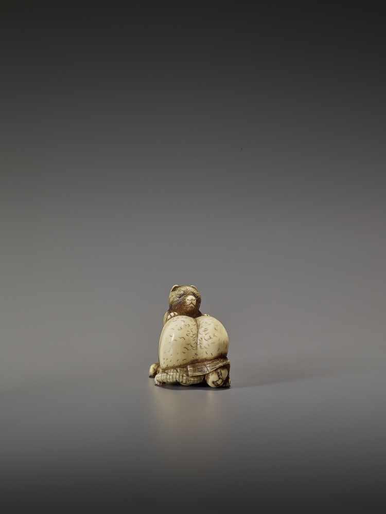 SHUNGETSU: IVORY NETSUKE OF A TANUKI SUFFOCATING A HUNTER WITH HIS SCROTUM By Shungetsu, signed - Image 9 of 11