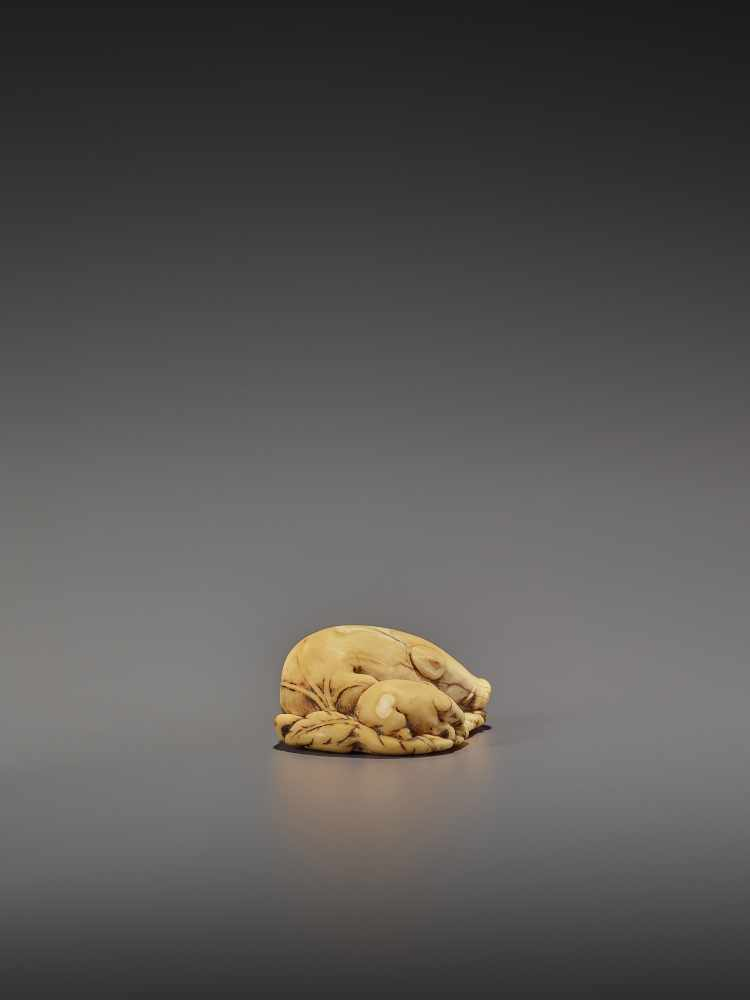 A FINE IVORY NETSUKE OF TWO RESTING BOARS UnsignedJapan, Kyoto, 18th century, Edo period (1615- - Image 8 of 9