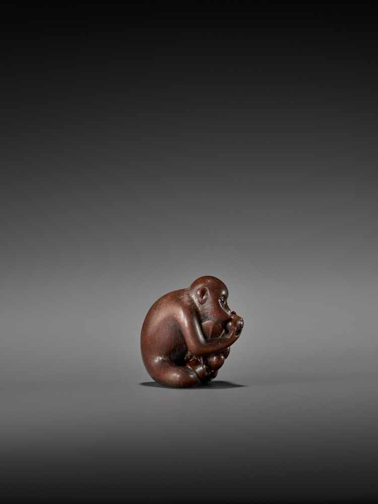 TOMOKAZU: AN EXCELLENT WOOD NETSUKE OF A MONKEY EATING PERSIMMONS By Kano Tomokazu, signed - Image 7 of 11