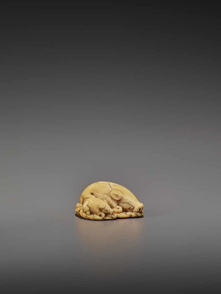 A FINE IVORY NETSUKE OF TWO RESTING BOARS UnsignedJapan, Kyoto, 18th century, Edo period (1615- - Image 9 of 9