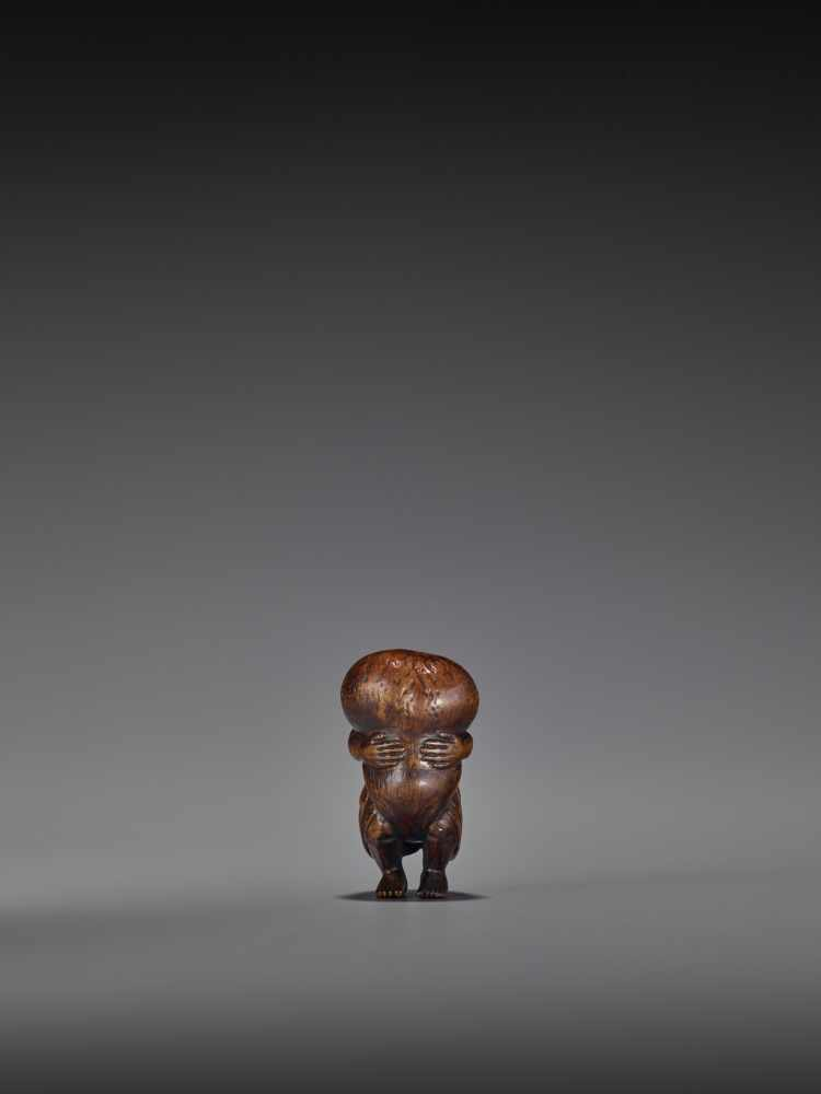 TOMOMASA: AN AMUSING WOOD NETSUKE OF A TANUKI WITH GIANT SCROTUM By Tomomasa, signed - Image 5 of 8