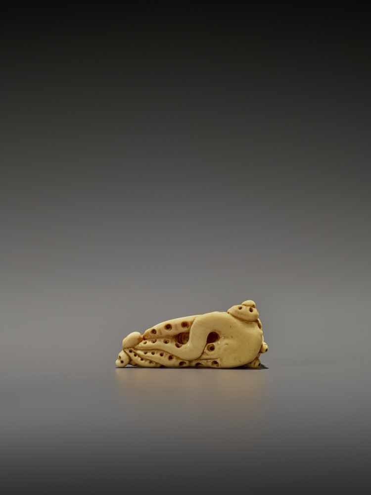 A RARE IVORY NETSUKE OF AN OCTOPUS UnsignedJapan, early 19th century, Edo period (1615-1868)The - Image 2 of 11