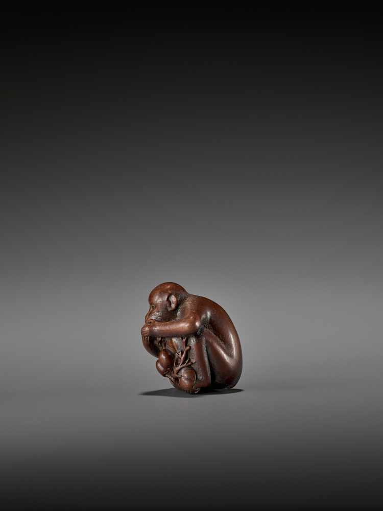 TOMOKAZU: AN EXCELLENT WOOD NETSUKE OF A MONKEY EATING PERSIMMONS By Kano Tomokazu, signed - Image 5 of 11