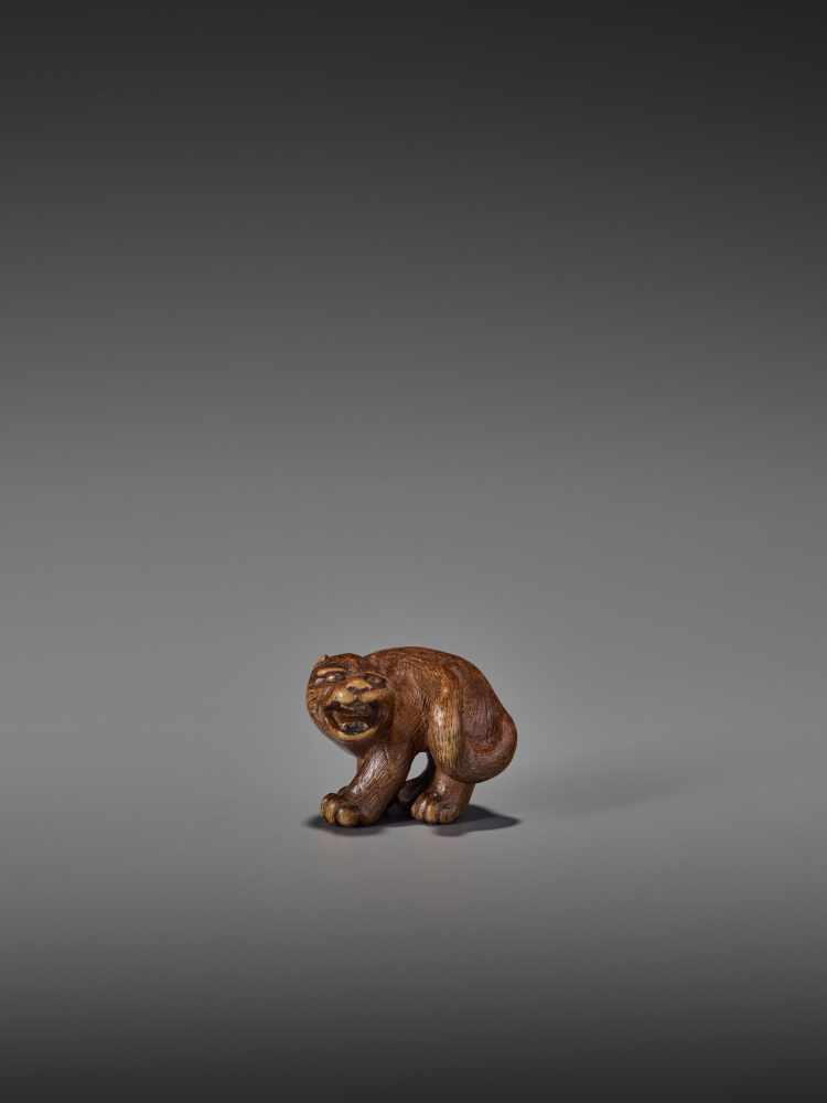 A RARE WOOD NETSUKE OF A SNARLING TIGER UnsignedJapan, 19th century, Edo period (1615-1868)A compact