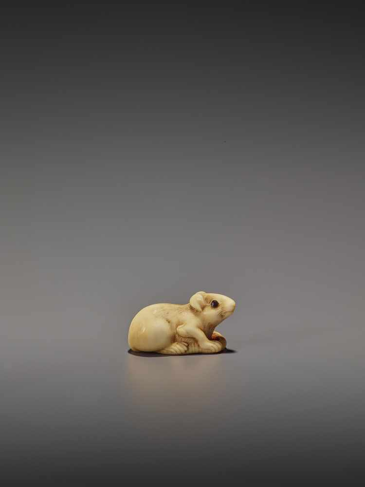 A CHARMING MARINE IVORY NETSUKE OF A RAT HOLDING ITS TAIL UnsignedJapan, 19th century, Edo period ( - Image 2 of 10