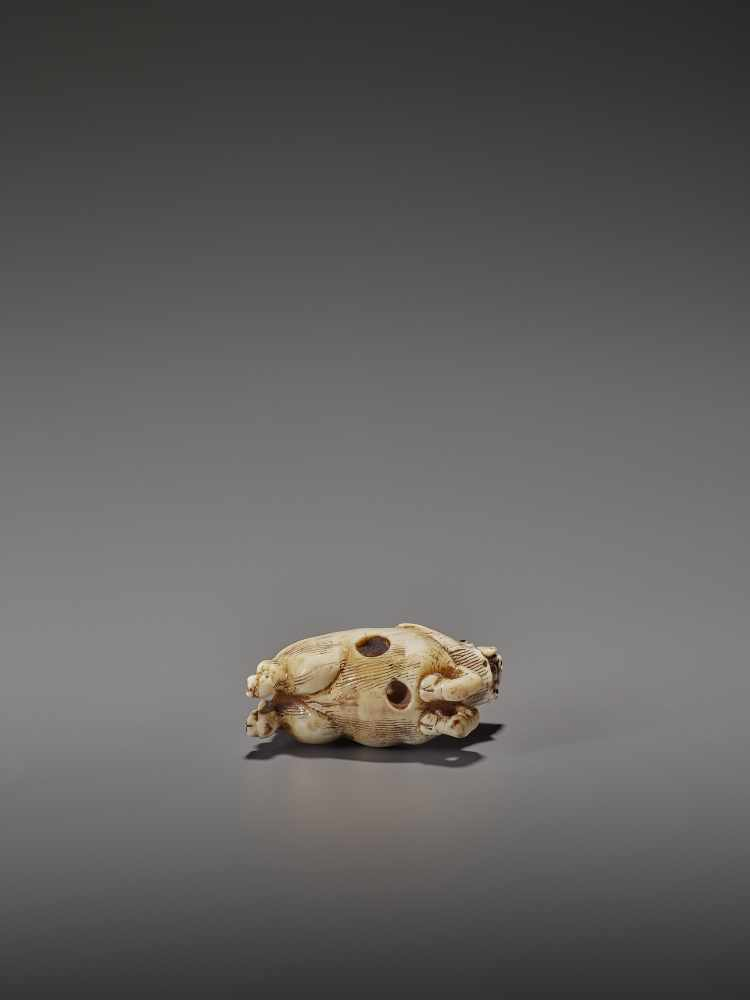 AN UNUSUAL IVORY NETSUKE OF A RUNNING BOAR UnsignedJapan, 18th century, Edo period (1615-1868)A very - Image 10 of 11