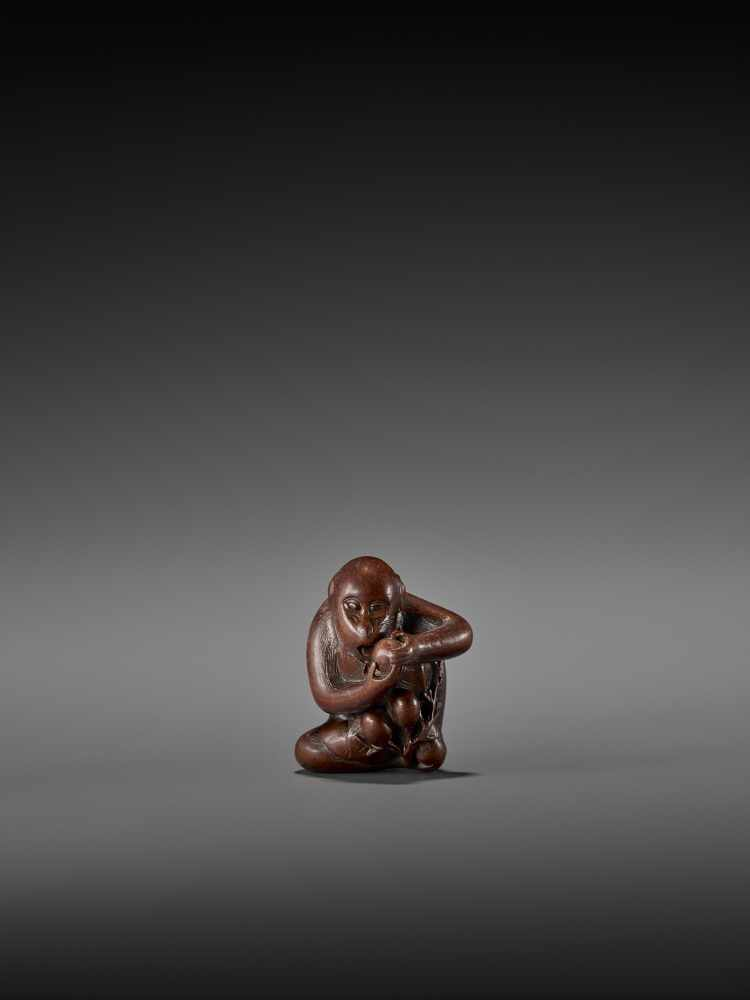 TOMOKAZU: AN EXCELLENT WOOD NETSUKE OF A MONKEY EATING PERSIMMONS By Kano Tomokazu, signed
