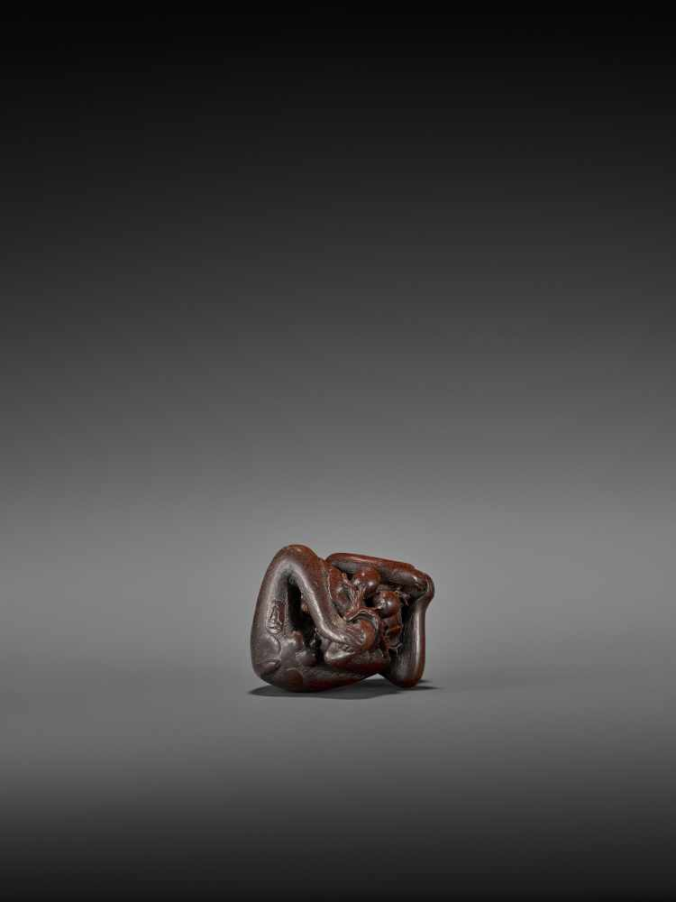 TOMOKAZU: AN EXCELLENT WOOD NETSUKE OF A MONKEY EATING PERSIMMONS By Kano Tomokazu, signed - Image 9 of 11